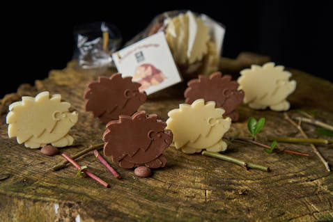 Prickle of Chocolate Hedgehogs